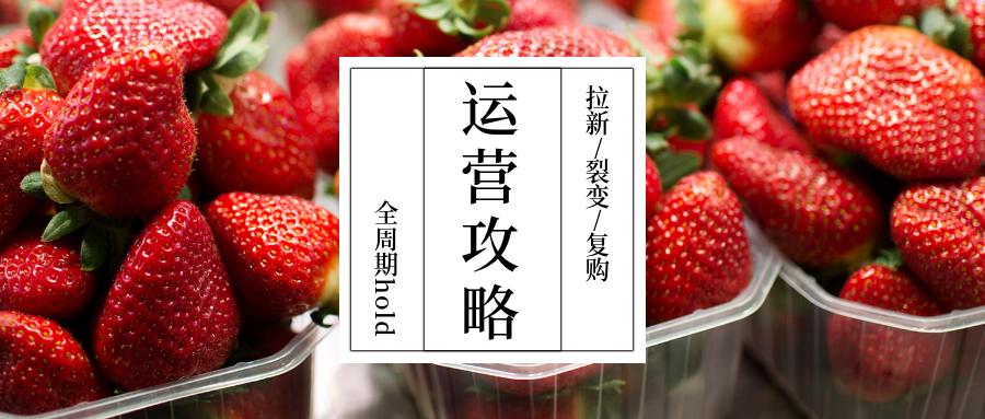 商领云解析-如何盘活水果店?拉新、裂变、复购全周期App运营攻略